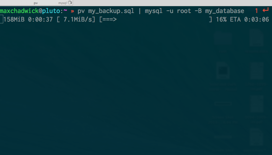 Example of running pv command in terminal
